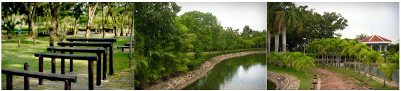 สวนหนองจอก1